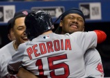 ST. PETERSBURG, FL - SEPTEMBER 24: Dustin Pedroia #15 of the Boston Red Sox is hugged by Hanley Ramirez after hitting a grand slam against the Tampa Bay Rays in the seventh inning on September 24, 2016 at Tropicana Field in St. Petersburg, Florida. (Photo by Michael Ivins/Boston Red Sox/Getty Images) *** Local Caption *** Dustin Pedroia;Hanley Ramirez